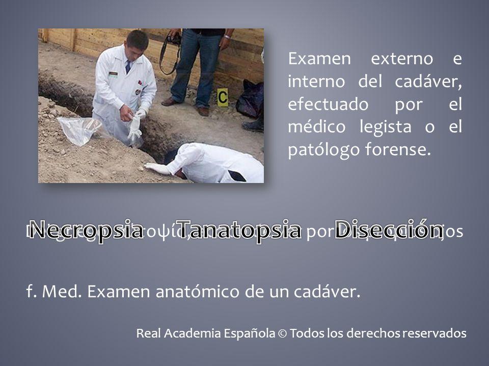 Examen externo e interno del cadáver, efectuado por el médico legista o el patólogo forense. Del griego: α τοψ α, acción de ver por los propios ojos f