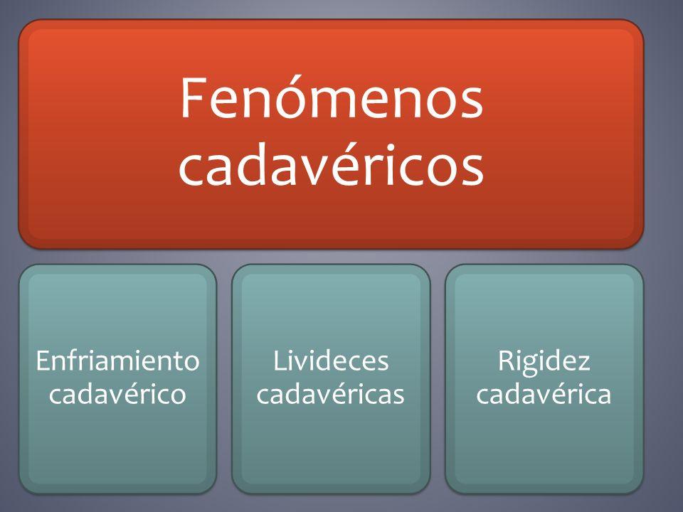 Fenómenos cadavéricos Enfriamiento cadavérico Livideces cadavéricas Rigidez cadavérica
