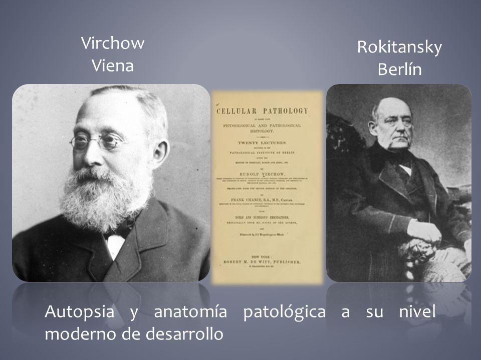 Virchow Viena Rokitansky Berlín Autopsia y anatomía patológica a su nivel moderno de desarrollo
