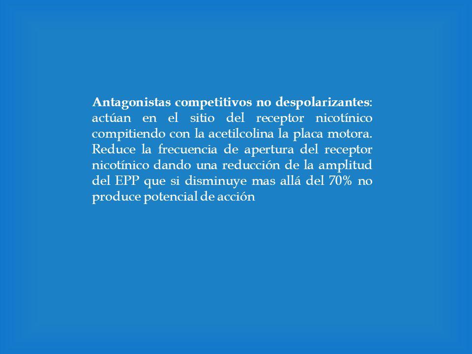 Antagonistas competitivos no despolarizantes : actúan en el sitio del receptor nicotínico compitiendo con la acetilcolina la placa motora. Reduce la f