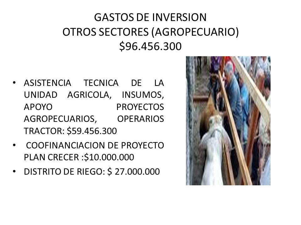 GASTOS DE INVERSION OTROS SECTORES (AGROPECUARIO) $96.456.300 ASISTENCIA TECNICA DE LA UNIDAD AGRICOLA, INSUMOS, APOYO PROYECTOS AGROPECUARIOS, OPERAR