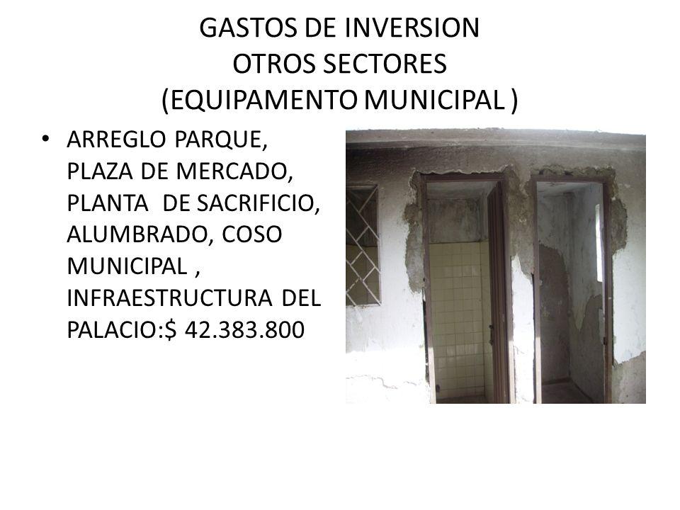 GASTOS DE INVERSION OTROS SECTORES (EQUIPAMENTO MUNICIPAL ) ARREGLO PARQUE, PLAZA DE MERCADO, PLANTA DE SACRIFICIO, ALUMBRADO, COSO MUNICIPAL, INFRAESTRUCTURA DEL PALACIO:$ 42.383.800