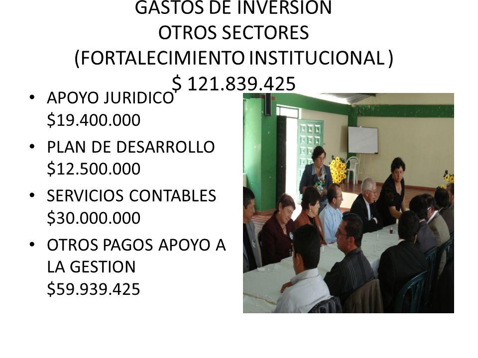GASTOS DE INVERSION OTROS SECTORES (FORTALECIMIENTO INSTITUCIONAL ) $ 121.839.425 APOYO JURIDICO $19.400.000 PLAN DE DESARROLLO $12.500.000 SERVICIOS CONTABLES $30.000.000 OTROS PAGOS APOYO A LA GESTION $59.939.425