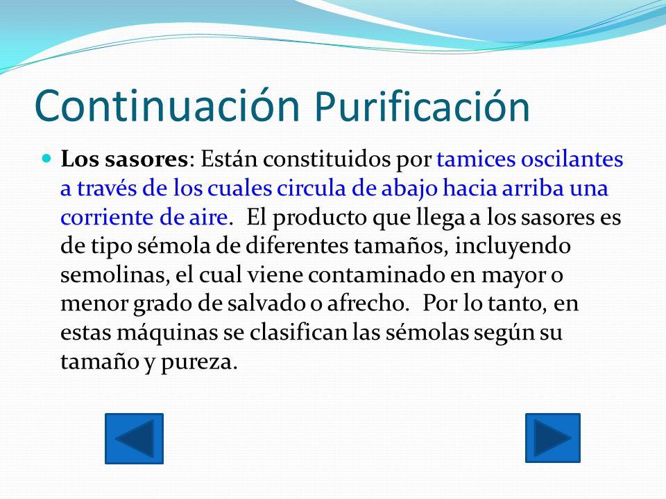 Continuación Purificación Los sasores: Están constituidos por tamices oscilantes a través de los cuales circula de abajo hacia arriba una corriente de