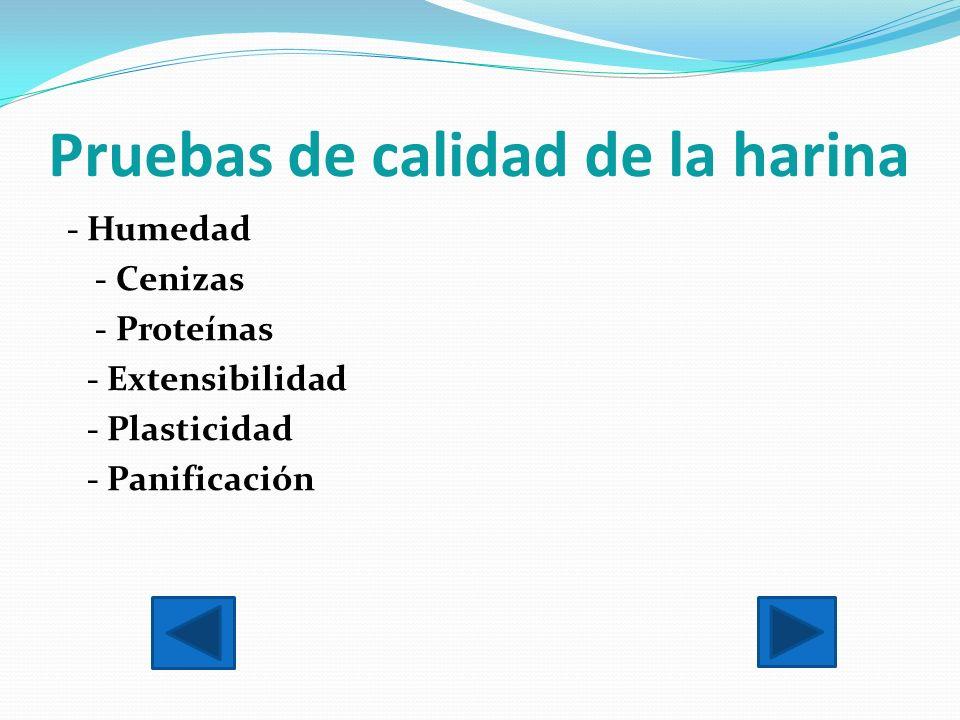 Pruebas de calidad de la harina - Humedad - Cenizas - Proteínas - Extensibilidad - Plasticidad - Panificación