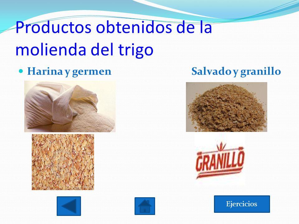 Productos obtenidos de la molienda del trigo Ejercicios Harina y germen Salvado y granillo