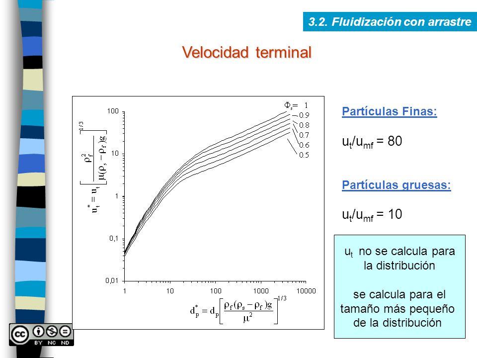 Velocidad terminal 3.2. Fluidización con arrastre Partículas Finas: u t /u mf = 80 Partículas gruesas: u t /u mf = 10 u t no se calcula para la distri