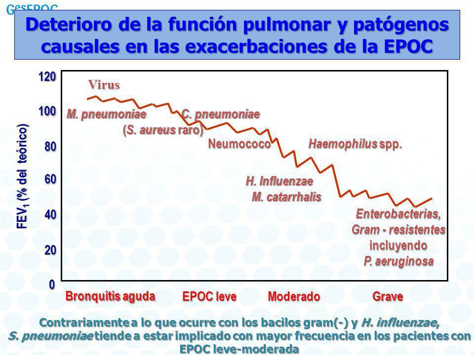 Deterioro de la función pulmonar y patógenos causales en las exacerbaciones de la EPOC Enterobacterias, Gram - resistentes incluyendo P. aeruginosa Br