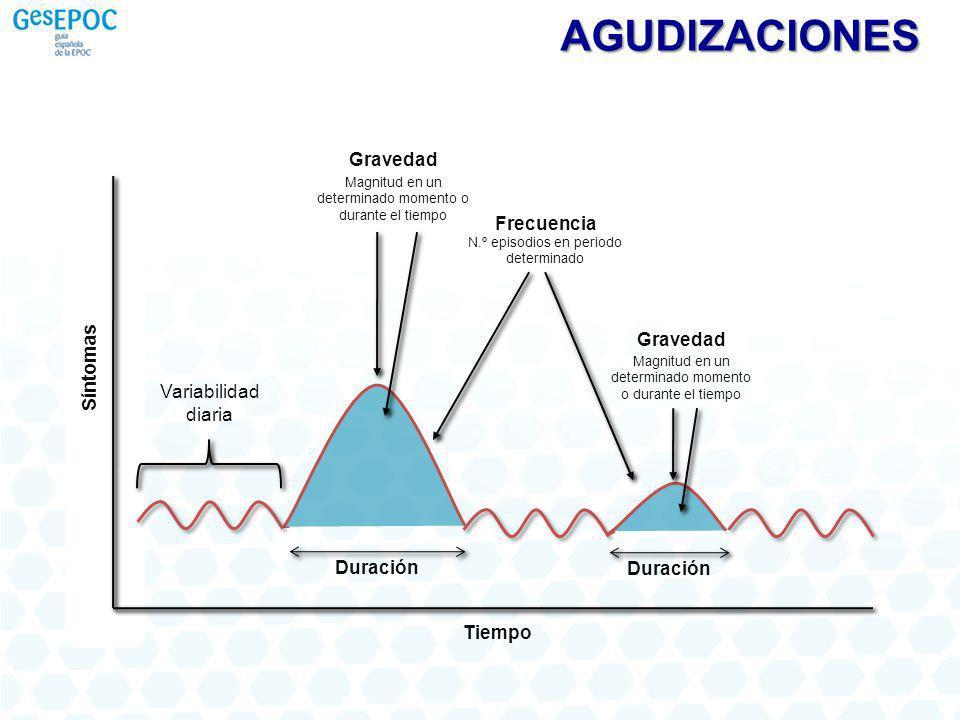 Duración Frecuencia N.º episodios en periodo determinado Gravedad Magnitud en un determinado momento o durante el tiempo Duración Gravedad Magnitud en un determinado momento o durante el tiempo Variabilidad diaria Tiempo Síntomas AGUDIZACIONES
