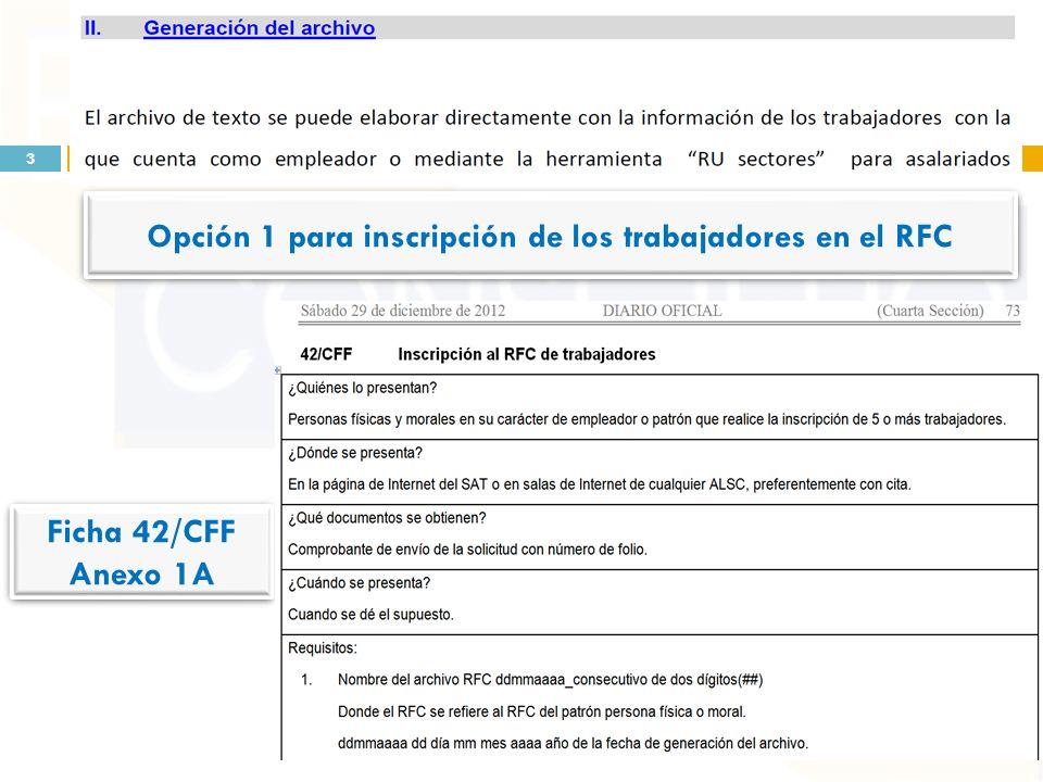 Opción 2 para inscripción de los trabajadores en el RFC