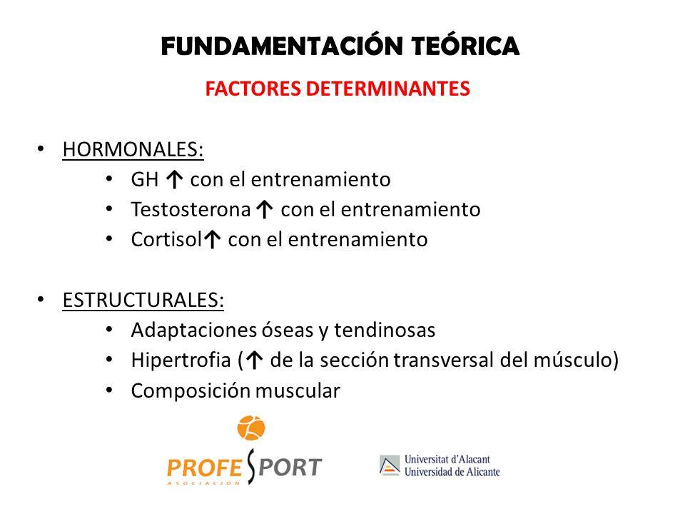 FACTORES DETERMINANTES HORMONALES: GH con el entrenamiento Testosterona con el entrenamiento Cortisol con el entrenamiento ESTRUCTURALES: Adaptaciones óseas y tendinosas Hipertrofia ( de la sección transversal del músculo) Composición muscular