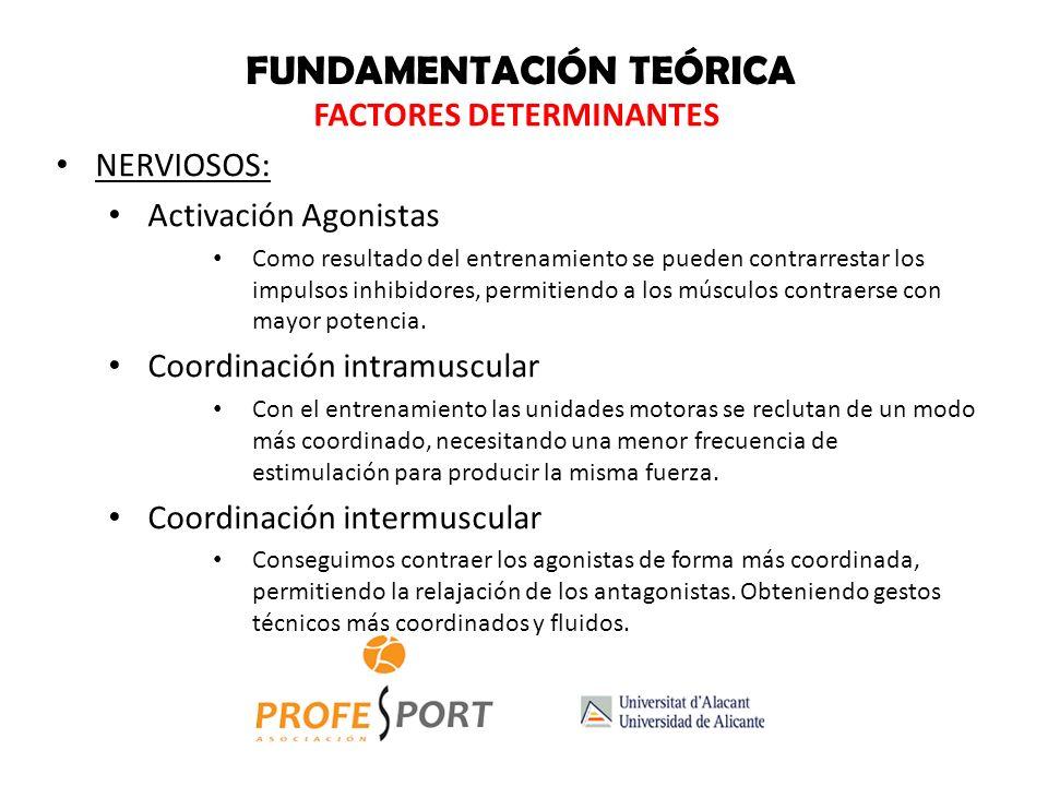 FACTORES DETERMINANTES HORMONALES: GH con el entrenamiento Testosterona con el entrenamiento Cortisol con el entrenamiento ESTRUCTURALES: Adaptaciones
