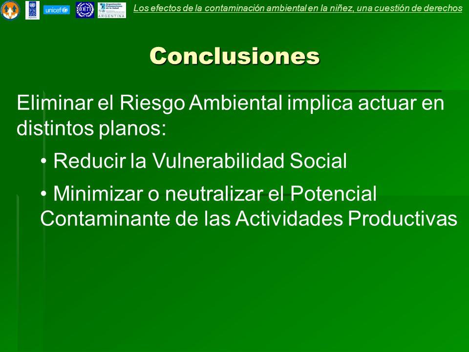 Conclusiones Eliminar el Riesgo Ambiental implica actuar en distintos planos: Reducir la Vulnerabilidad Social Minimizar o neutralizar el Potencial Contaminante de las Actividades Productivas Los efectos de la contaminación ambiental en la niñez, una cuestión de derechos