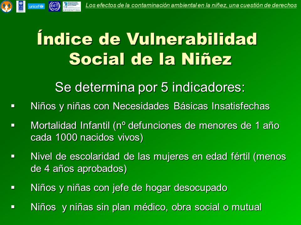 Índice de Vulnerabilidad Social de la Niñez Se determina por 5 indicadores: Niños y niñas con Necesidades Básicas Insatisfechas Niños y niñas con Nece