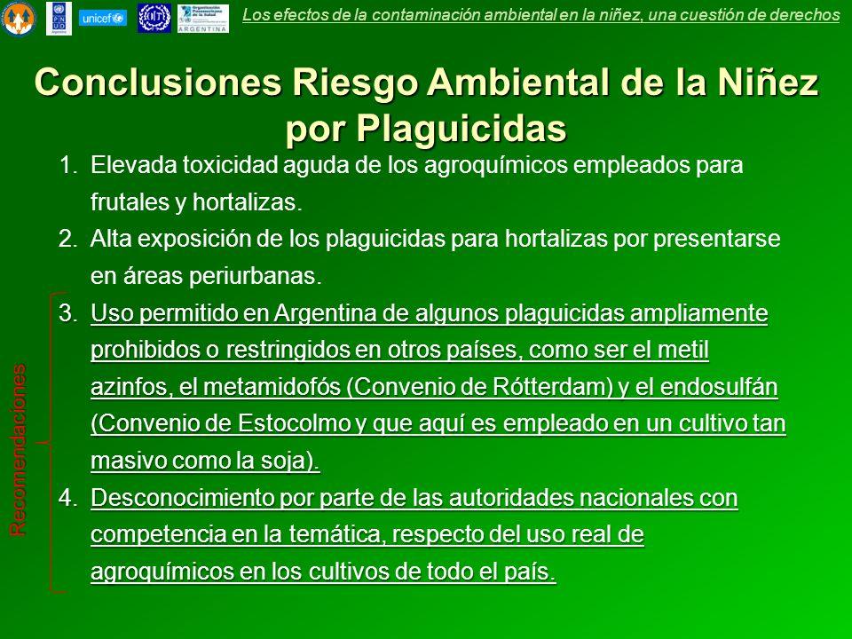 Conclusiones Riesgo Ambiental de la Niñez por Plaguicidas 1.Elevada toxicidad aguda de los agroquímicos empleados para frutales y hortalizas. 2.Alta e