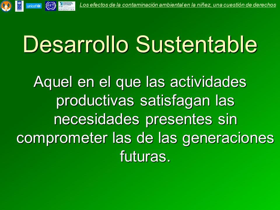Aquel en el que las actividades productivas satisfagan las necesidades presentes sin comprometer las de las generaciones futuras. Los efectos de la co
