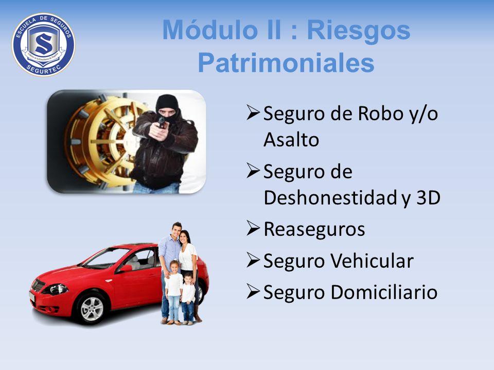 Módulo II : Riesgos Patrimoniales Seguro de Robo y/o Asalto Seguro de Deshonestidad y 3D Reaseguros Seguro Vehicular Seguro Domiciliario