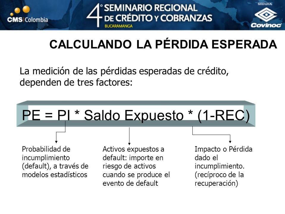 CALCULANDO LA PÉRDIDA ESPERADA La medición de las pérdidas esperadas de crédito, dependen de tres factores: PE = PI * Saldo Expuesto * (1-REC) Probabi