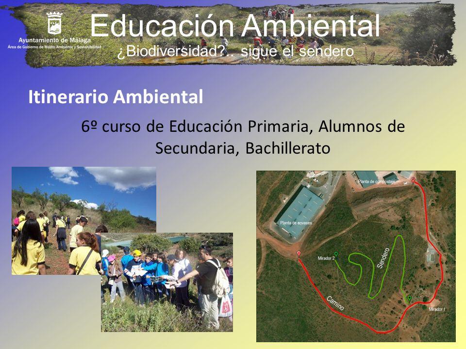 Educación Ambiental 6º curso de Educación Primaria, Alumnos de Secundaria, Bachillerato Itinerario Ambiental ¿Biodiversidad?.. sigue el sendero