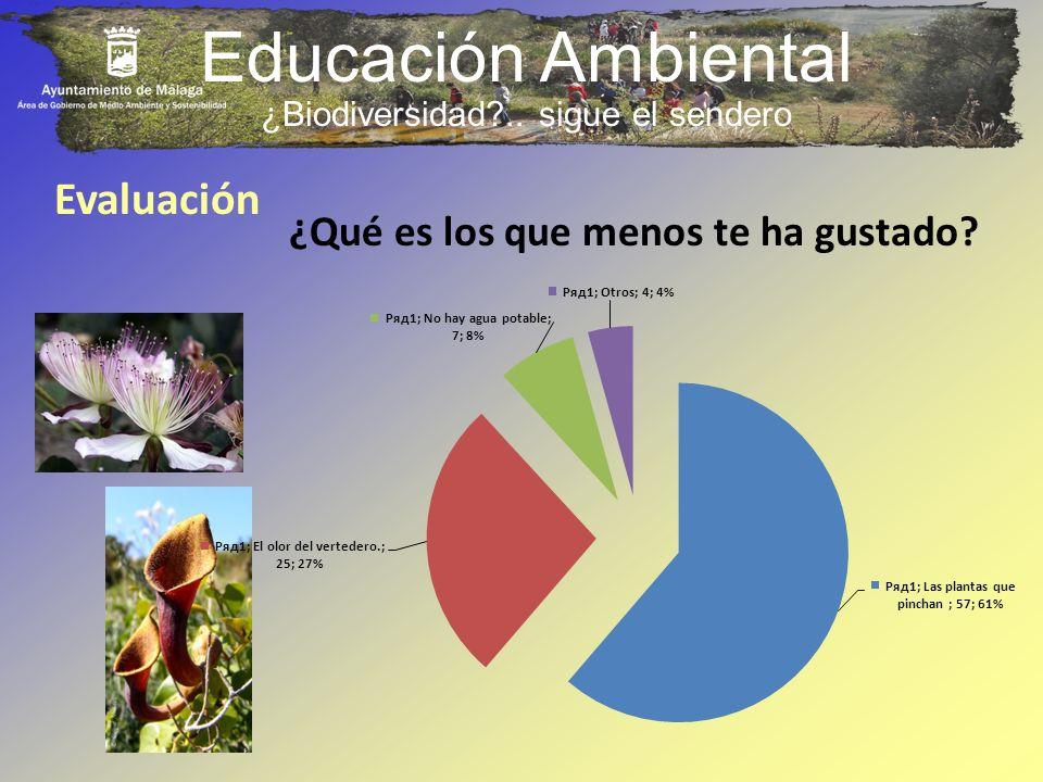 Educación Ambiental Evaluación ¿Qué es los que menos te ha gustado? ¿Biodiversidad?.. sigue el sendero