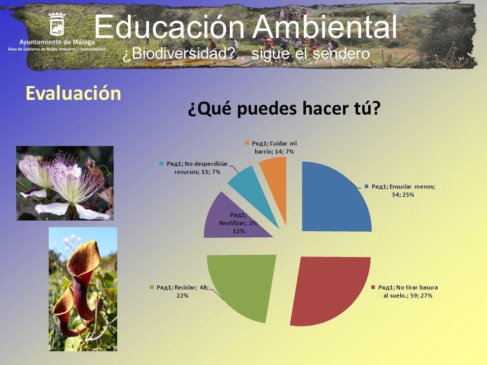 Educación Ambiental Evaluación ¿Qué puedes hacer tú? ¿Biodiversidad?.. sigue el sendero