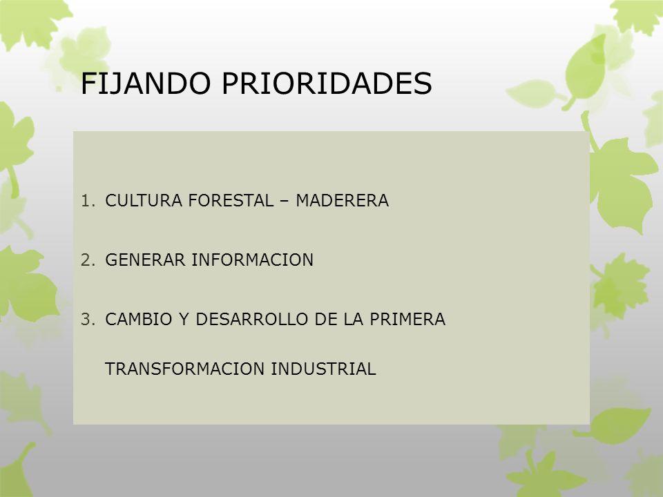 FIJANDO PRIORIDADES 1.CULTURA FORESTAL – MADERERA 2.GENERAR INFORMACION 3.CAMBIO Y DESARROLLO DE LA PRIMERA TRANSFORMACION INDUSTRIAL