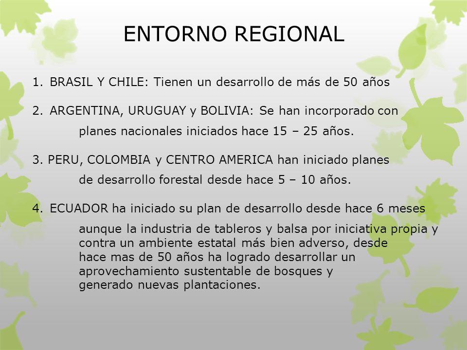 ENTORNO REGIONAL 1.BRASIL Y CHILE: Tienen un desarrollo de más de 50 años 2.ARGENTINA, URUGUAY y BOLIVIA: Se han incorporado con planes nacionales ini