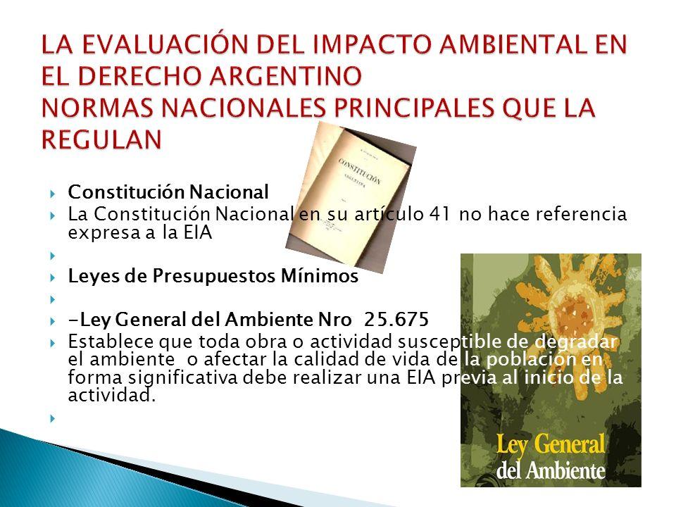 Constitución Nacional La Constitución Nacional en su artículo 41 no hace referencia expresa a la EIA Leyes de Presupuestos Mínimos -Ley General del Am