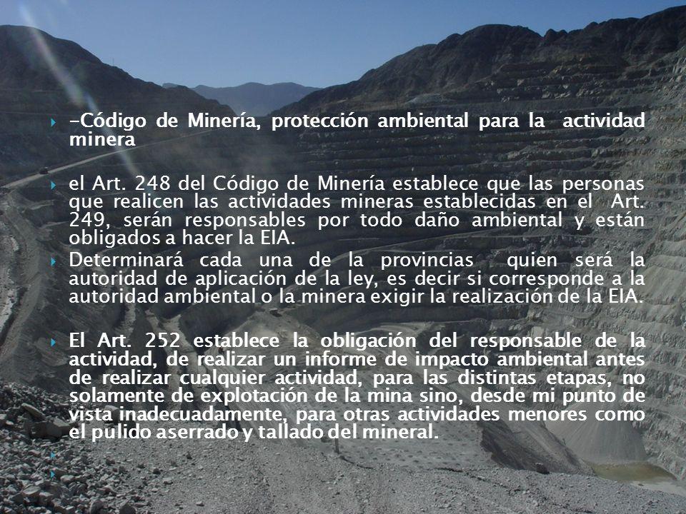 -Código de Minería, protección ambiental para la actividad minera el Art. 248 del Código de Minería establece que las personas que realicen las activi