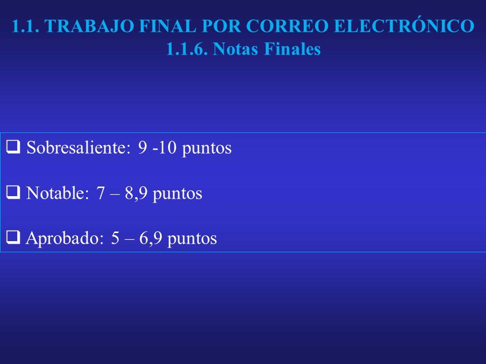 1.1. TRABAJO FINAL POR CORREO ELECTRÓNICO 1.1.6.