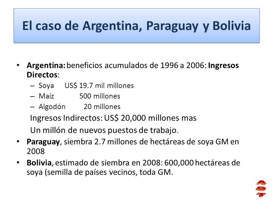 El caso de Argentina, Paraguay y Bolivia Argentina: beneficios acumulados de 1996 a 2006: Ingresos Directos: – Soya US$ 19.7 mil millones – Maíz 500 m