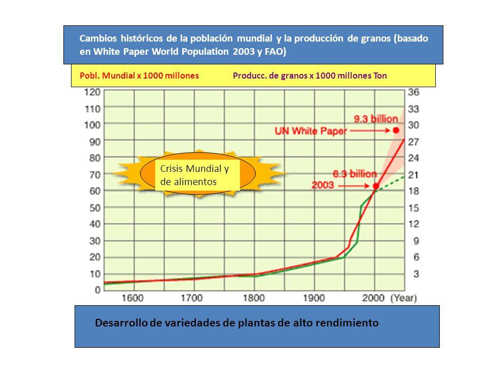 Cambios históricos de la población mundial y la producción de granos (basado en White Paper World Population 2003 y FAO) Crisis Mundial y de alimentos