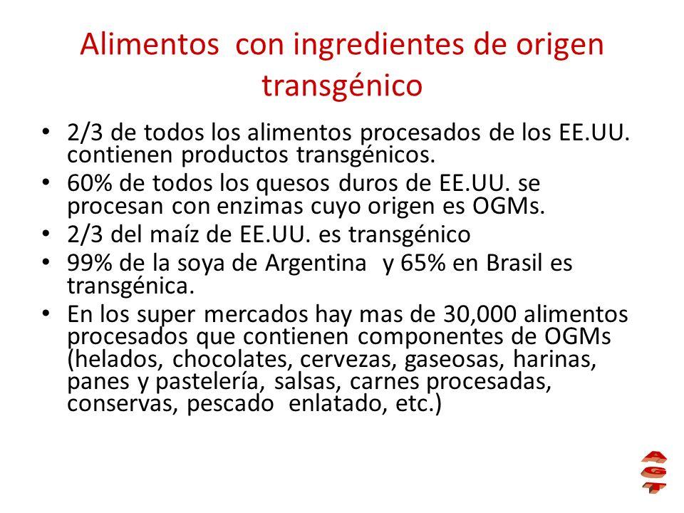 Alimentos con ingredientes de origen transgénico 2/3 de todos los alimentos procesados de los EE.UU. contienen productos transgénicos. 60% de todos lo