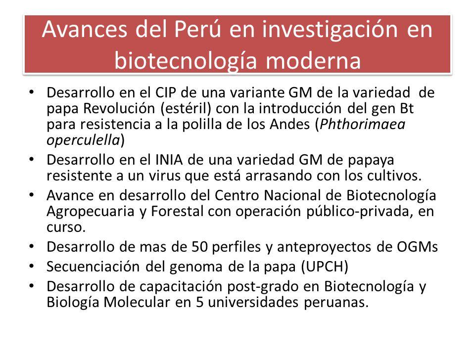 Avances del Perú en investigación en biotecnología moderna Desarrollo en el CIP de una variante GM de la variedad de papa Revolución (estéril) con la