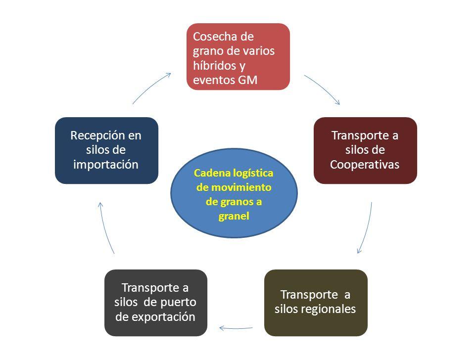 Cosecha de grano de varios híbridos y eventos GM Transporte a silos de Cooperativas Transporte a silos regionales Transporte a silos de puerto de expo