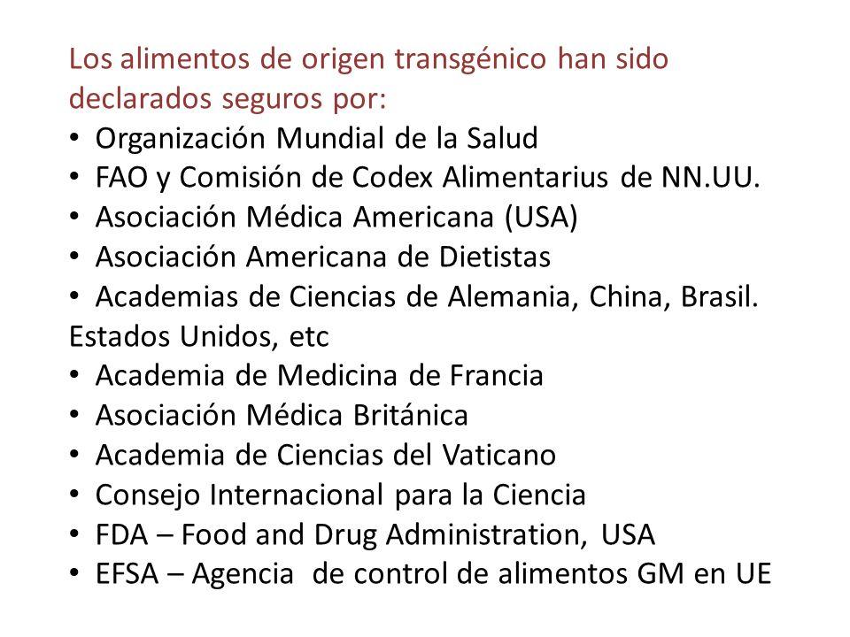 Los alimentos de origen transgénico han sido declarados seguros por: Organización Mundial de la Salud FAO y Comisión de Codex Alimentarius de NN.UU. A