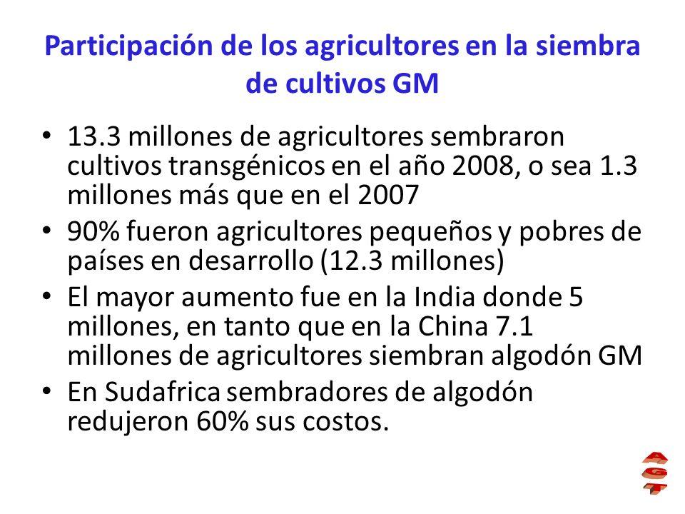 Participación de los agricultores en la siembra de cultivos GM 13.3 millones de agricultores sembraron cultivos transgénicos en el año 2008, o sea 1.3