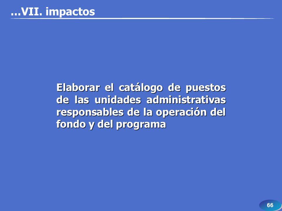 66 Elaborar el catálogo de puestos de las unidades administrativas responsables de la operación del fondo y del programa...VII. impactos
