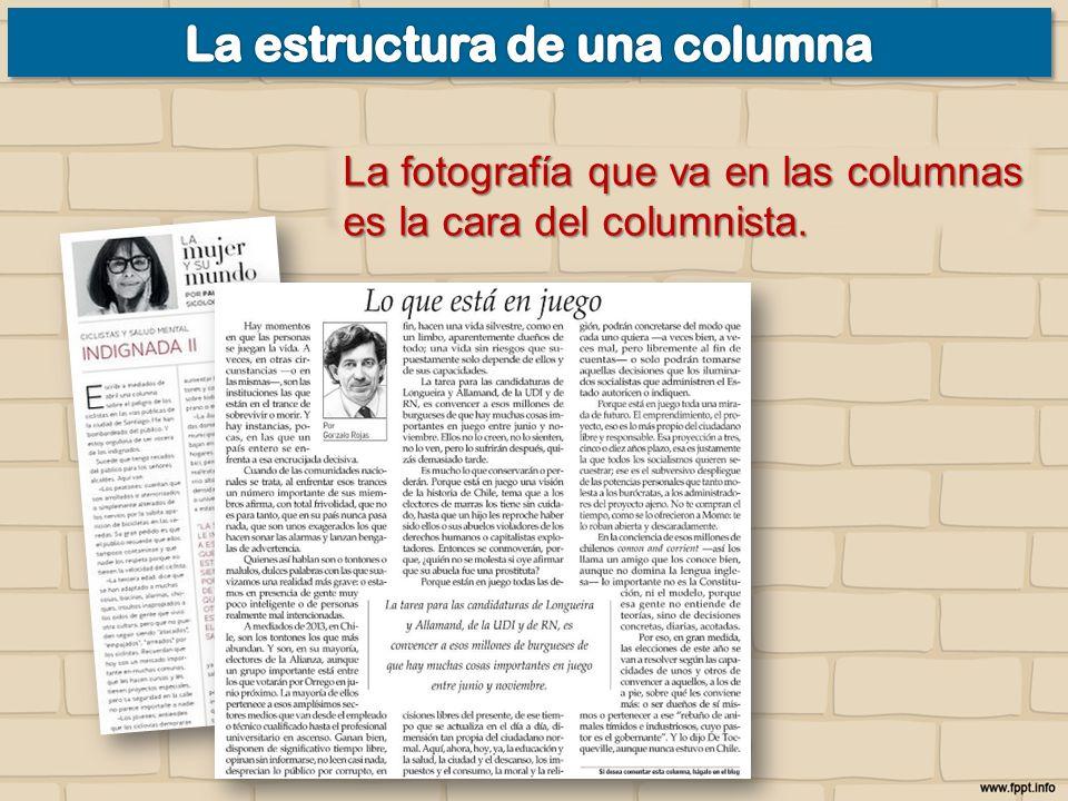 La fotografía que va en las columnas es la cara del columnista.
