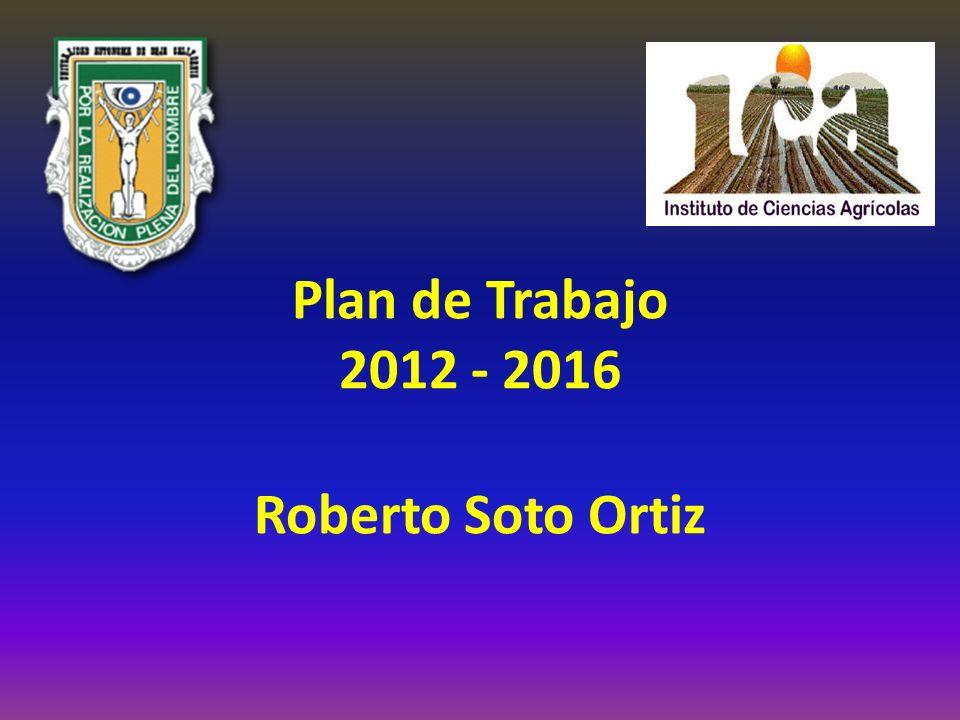 Plan de Trabajo 2012 - 2016 Roberto Soto Ortiz