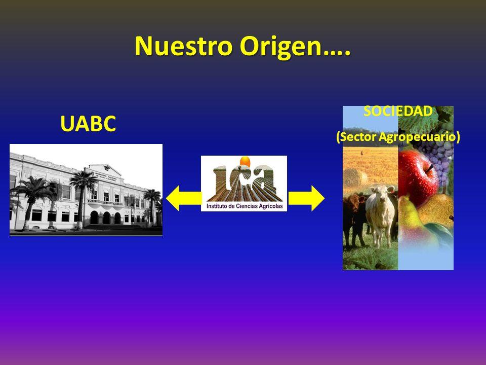 Nuestro Origen…. UABC SOCIEDAD (Sector Agropecuario)