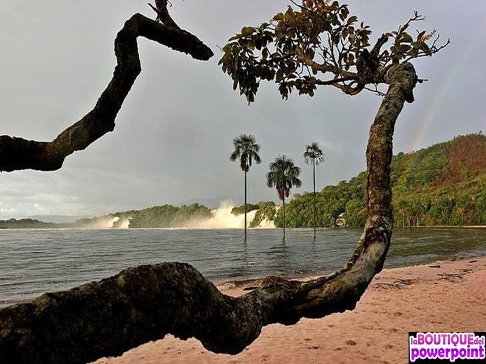 Laguna de Canaima es un cuerpo de agua localizado en la región conocida como la Gran Sabana, en el espacio natural protegido llamado Parque Nacional C
