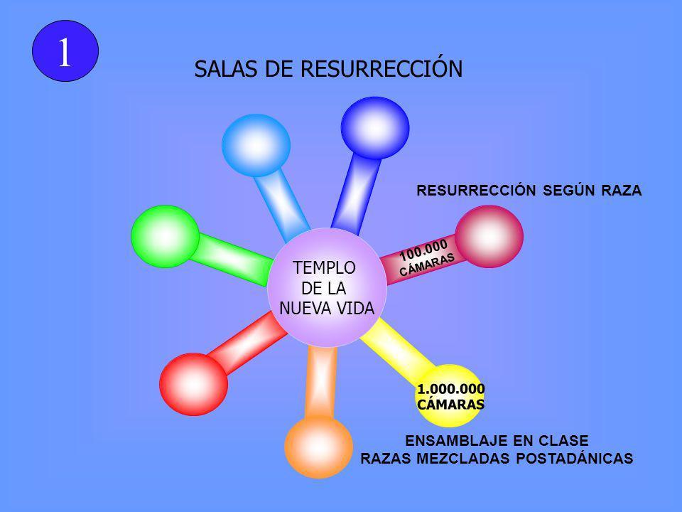 SALAS DE RESURRECCIÓN TEMPLO DE LA NUEVA VIDA 100.000 CÁMARAS 1.000.000 CÁMARAS ENSAMBLAJE EN CLASE RAZAS MEZCLADAS POSTADÁNICAS 1 RESURRECCIÓN SEGÚN RAZA