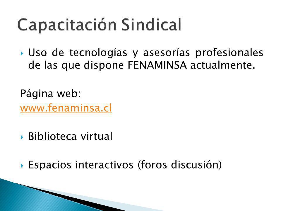 Uso de tecnologías y asesorías profesionales de las que dispone FENAMINSA actualmente. Página web: www.fenaminsa.cl Biblioteca virtual Espacios intera