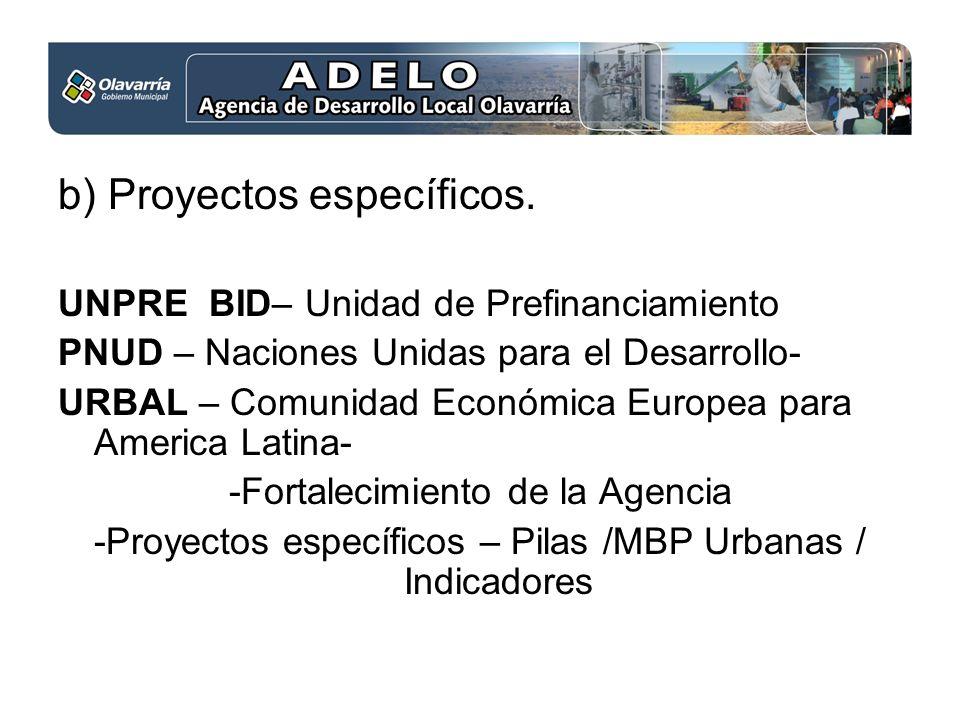 b) Proyectos específicos. UNPRE BID– Unidad de Prefinanciamiento PNUD – Naciones Unidas para el Desarrollo- URBAL – Comunidad Económica Europea para A