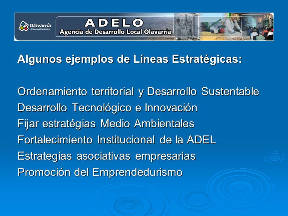 Algunos ejemplos de Líneas Estratégicas: Ordenamiento territorial y Desarrollo Sustentable Desarrollo Tecnológico e Innovación Fijar estratégias Medio Ambientales Fortalecimiento Institucional de la ADEL Estrategias asociativas empresarias Promoción del Emprendedurismo