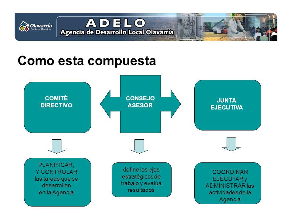Como esta compuesta COMITÉ DIRECTIVO CONSEJO ASESOR JUNTA EJECUTIVA PLANIFICAR, Y CONTROLAR las tareas que se desarrollen en la Agencia define los eje