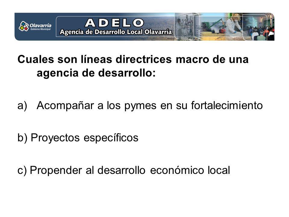Cuales son líneas directrices macro de una agencia de desarrollo: a)Acompañar a los pymes en su fortalecimiento b) Proyectos específicos c) Propender al desarrollo económico local