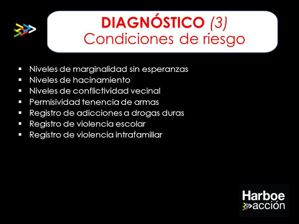 DIAGNÓSTICO (3) Condiciones de riesgo Niveles de marginalidad sin esperanzas Niveles de hacinamiento Niveles de conflictividad vecinal Permisividad te