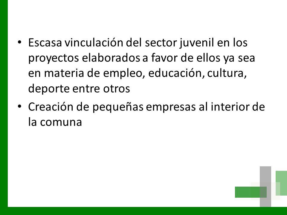 Escasa vinculación del sector juvenil en los proyectos elaborados a favor de ellos ya sea en materia de empleo, educación, cultura, deporte entre otro